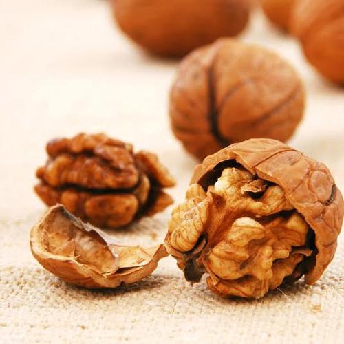 วอลนัท (Walnuts)